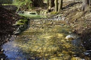 autumn creek copy