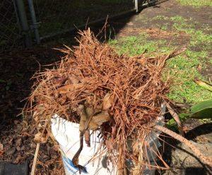 Garden debris