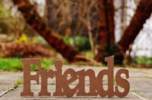 wooden word friends copy