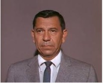 Joe Friday copy