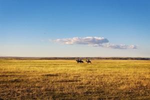 horseback on the prairie