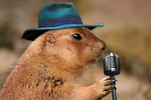 prairie dog with microphone
