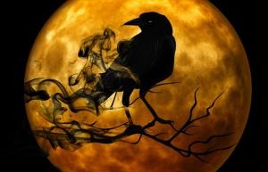 raven copy