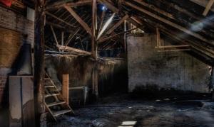 basement-copy