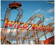 wild-mouse-sign-copy